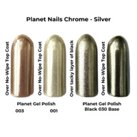 Chrome Effect Mirror Pigment - Silver - 3G