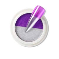 Dual Pigment - Chrome - Purple and Silver